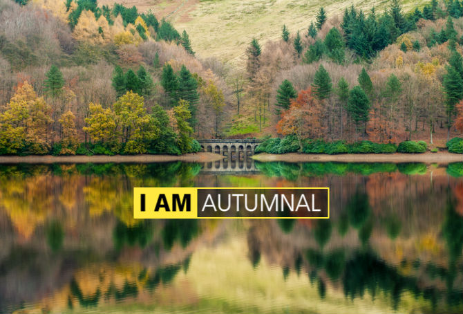 I AM Autumnal