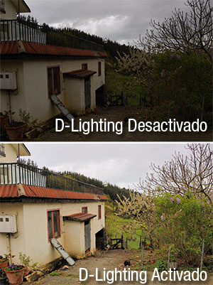 D60 DLighting